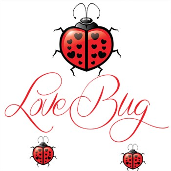 Love Bug 100ml E Liquid - Shortfill