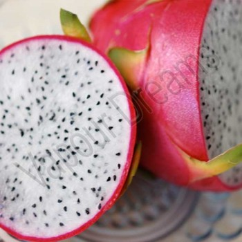 Dragon Fruit Flavouring - Capella
