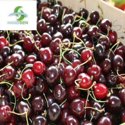 Black Cherry E Liquid 10mls - Hangsen